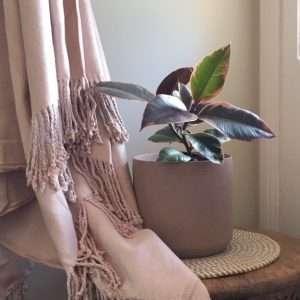 Organic Bamboo Throw Rug Rose Dust